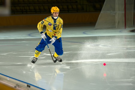 bandy: MOSCOW - FEBRUARY 26, 2016: Gennady Bochkarev 88 in action during the Russian bandy league game Dynamo Moscow vs Zorky Krasnogorsk in sport palace Krilatskoe, Moscow, Russia. Dynamo won 9: 2