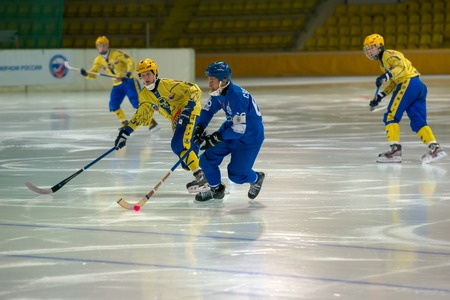 dynamo: MOSCOW - FEBRUARY 26, 2016: Mikhail Sveshnikov 66 in action during the Russian bandy league game Dynamo Moscow vs Zorky Krasnogorsk in sport palace Krilatskoe, Moscow, Russia. Dynamo won 9: 2