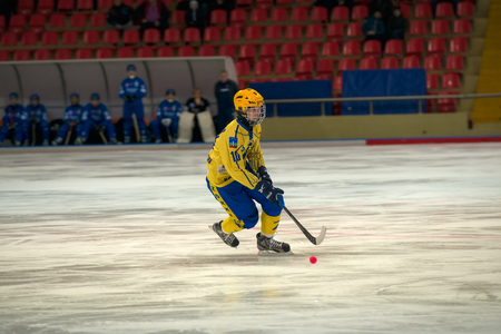 bandy: MOSCOW - FEBRUARY 26, 2016: Vdovenko Vyacheslav (10) in action during the Russian bandy league game Dynamo Moscow vs Zorky Krasnogorsk in sport palace Krilatskoe, Moscow, Russia. Dynamo won 9: 2