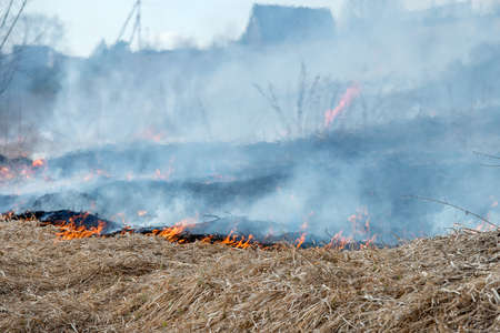 burning: Dry grass burning in the early spring