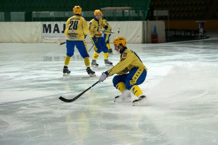 ganado: MOSCÚ - 26 de febrero, 2016: 88 Gennady Bochkarev en acción durante el partido de la liga rusa bandy Dynamo Moscow vs Zorky Krasnogorsk en el deporte palacio Krilatskoe, Moscú, Rusia. Dynamo ganó 9: 2 Editorial