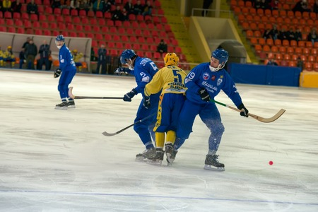 bandy: MOSCOW - FEBRUARY 26, 2016: Osokin Dmitri (5) in action during the Russian bandy league game Dynamo Moscow vs Sharp Krasnogorsk in sport palace Krilatskoe, Moscow, Russia. Dynamo won 9: 2