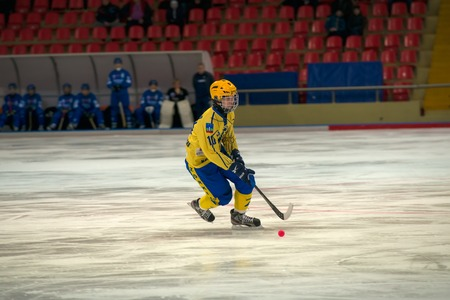 MOSCOW - FEBRUARY 26, 2016: Vdovenko Vyacheslav (10) in action during the Russian bandy league game Dynamo Moscow vs Zorky Krasnogorsk in sport palace Krilatskoe, Moscow, Russia. Dynamo won 9: 2