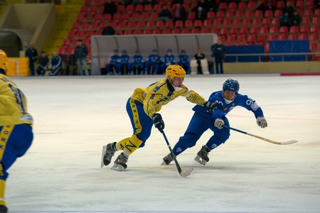 MOSCOW - FEBRUARY 26, 2016: Roman Kozulin (28) in action during the Russian bandy league game Dynamo Moscow vs Zorky Krasnogorsk in sport palace Krilatskoe, Moscow, Russia. Dynamo won 9: 2