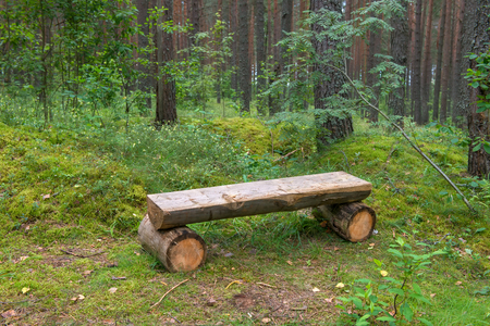 A recreation bench made of wood in the woods