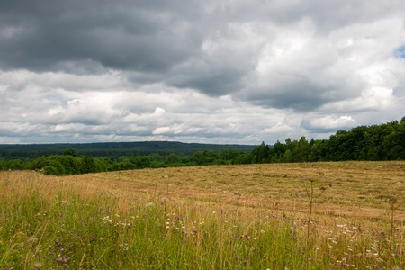 Dark clouds over mown grass field Stock Photo