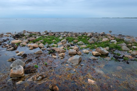 the Big Solovetsky island. The White Sea coast from large boulders Reklamní fotografie - 122279599