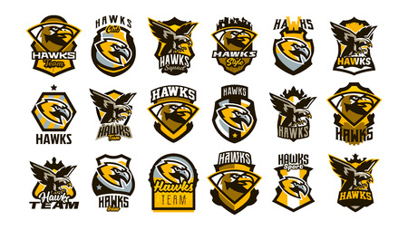A large collection of colorful logos, badges, emblems on the theme of a hawk. Flying bird, hunter, predator, dangerous animal, shield, lettering. Mascot sports club, vector illustration Çizim