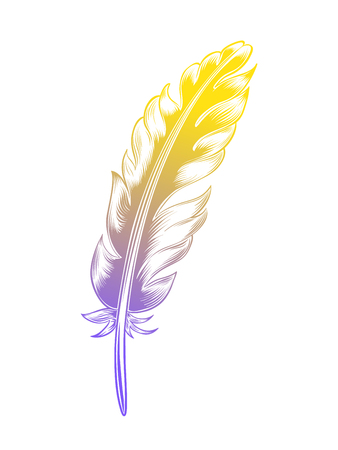 Vintage color feather isolated on white background Illustration