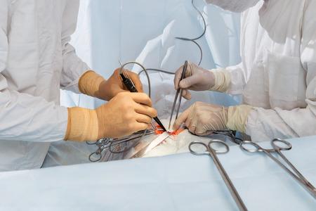 Chirurgen während der Operation Standard-Bild - 48413053