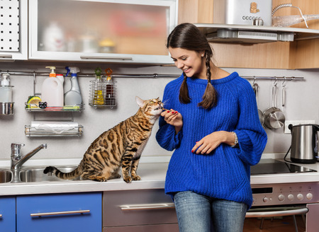 niñas jugando: El gato y la niña en la cocina