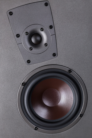 acoustic systems: Audio speaker