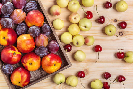Nectarines, cherries and plums on the table.