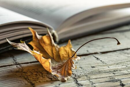 Closeup open book and dry maple leaf on old wooden background. Autumn theme.