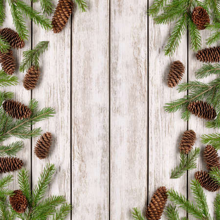The concept of winter holidays and congratulations. Spruce branches and cones on a light wooden background, copy space. 版權商用圖片