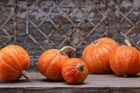 Orange mini pumpkins on an old gray-blue antique background with geometric pattern, closeup.
