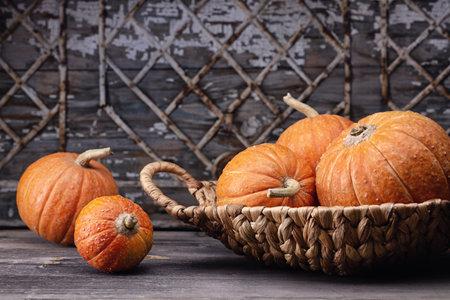 Orange mini pumpkins in wicker basket on wooden table, gray old background with geometric pattern.
