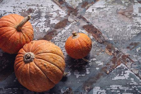 Three orange mini pumpkins on an old gray unusual background, closeup.