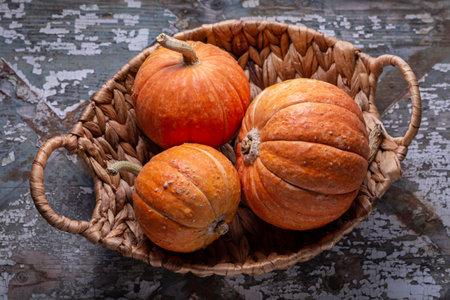 Orange little pumpkins in a wicker basket on an old gray background. Copy space, Halloween design.