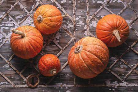 Orange mini pumpkins on an old gray antique background with geometric pattern, closeup. 版權商用圖片