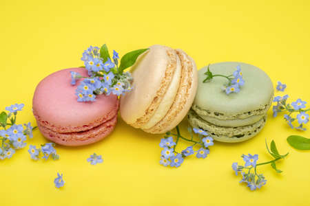 Multicolored macaroons and forget-me-not flowers on a yellow background. Top view, close-up.