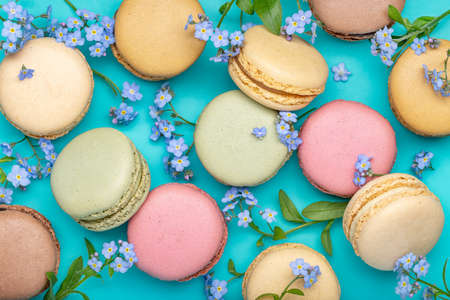 Background of forget-me-nots and macarons. French biscuit biscuits of different colors, blue background, closeup, studio shot.