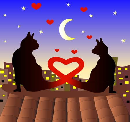 hot couple: Couple of cats watching eatch other. Love cats. Valentines day. Illustration