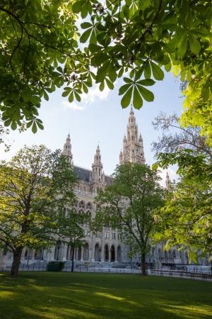 rathaus: Rathaus  Town Hall  in spring, Vienna Austria Stock Photo