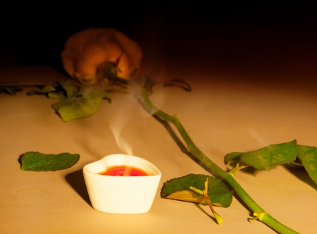 extinguished candle and rose  in dark colors photo