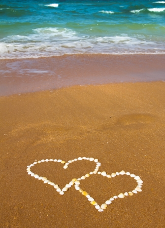 connected hearts made from hells on beach - love concept Stock Photo - 17438994