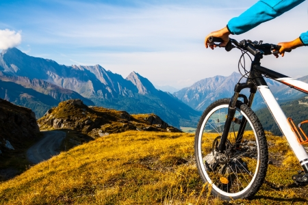 Mountain bike wheel and sommer alpine  landscape