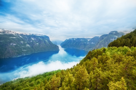 Hight summer view to Sognefjord in Norway