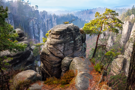 보헤미안 파라다이스 아름다운 바위, 체코 공화국 스톡 콘텐츠