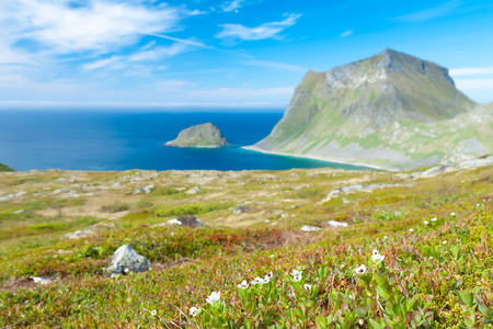 fishing hut: Scenic fjord on Lofoten islands with typical fishing hut and towering mountain peaks