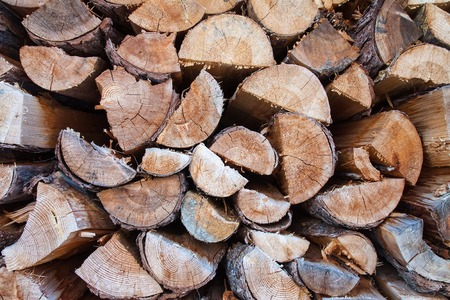 unsustainable: timber pattern of pine wood  Austrian Alps