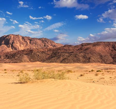 sinai desert: Egypt Sinai desert view  Rocky hills Blue sky