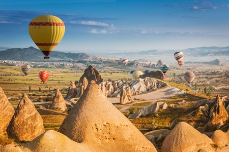 Hot air balloons flying over a field of poppies and rock landscape at Cappadocia, Turkey Banco de Imagens