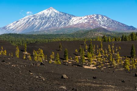 stratovolcano: Volcano Teide National Park Tenerife Canary Islands