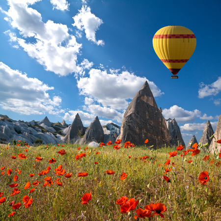 Hot air balloons flying over a field of poppies and rock landscape at Cappadocia, Turkey Foto de archivo