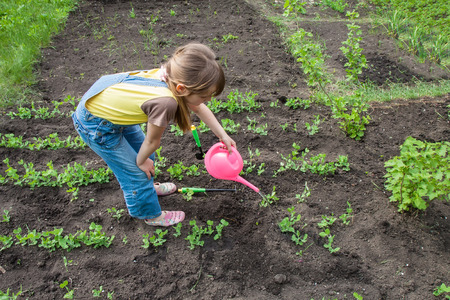 water garden: little girl in garden with growing plants Stock Photo