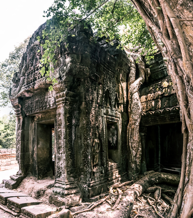 Giant tree and roots in temple Ta Prom Angkor wat Cambodia landmark Stock Photo