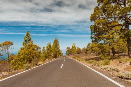 Road in volcanic desert Tenerife, Canary. Asphalt and white line on road Banco de Imagens