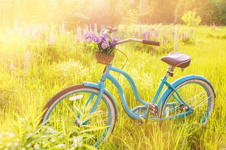 Vintage bicycle with basket full of flowers standing in the sunny field