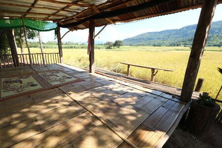 Accommodation for watching rice fields in Phu Luang District, Loei Province, Thailand