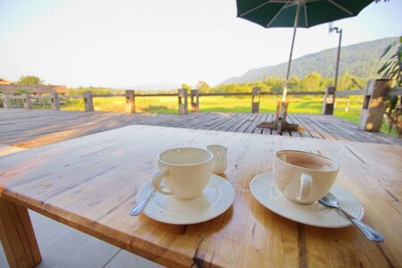 Coffee Seating in Nature Thailand Imagens - 146414610