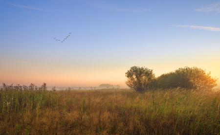 suburbs: Early morning in the suburbs. Dawn. Stock Photo