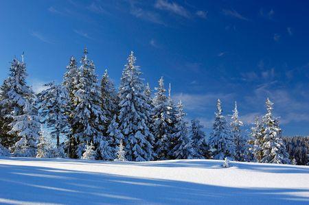 Mountains Carpathians, Ukraine, a mountain valley Pogarsky. Winter. photo