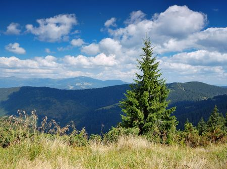 The end of summer. The picture is made in mountains Carpathians, Ukraine. Stock Photo - 6593551