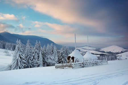 Winter landscape in mountains Carpathians, Ukraine and a valley with huts Stock Photo - 8071566