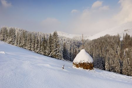 Winter landscape in mountains Carpathians, Ukraine and a valley with huts Stock Photo - 8071569
